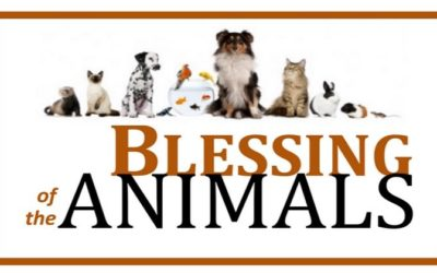 Blessing of the Animals on Sept. 30